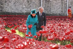 queen-tower-london-poppies